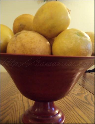 a gift of large Florida lemons