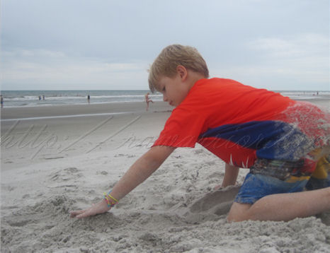 Roo at beach