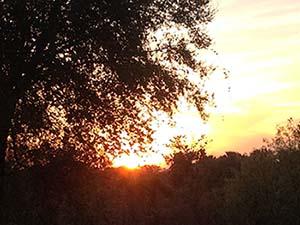 sunset after track meet