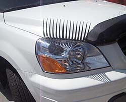 car eyelashes
