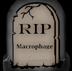 Tombstone Macrophage