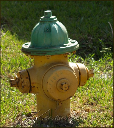 Is prednisone for RA like fire hydrant or a wet blanket?