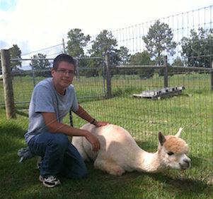 Bear and Amelia tha alpaca