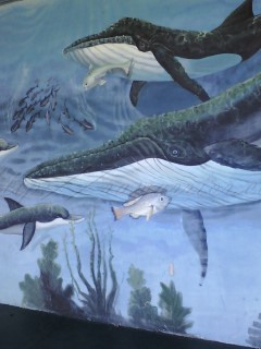 Fish mural in Titusville