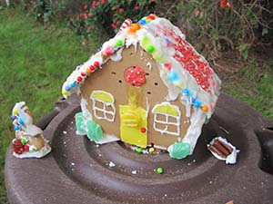 gingerbread-house-bb-holes