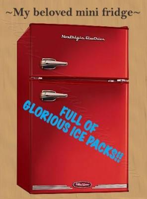 mini fridge for ice packs